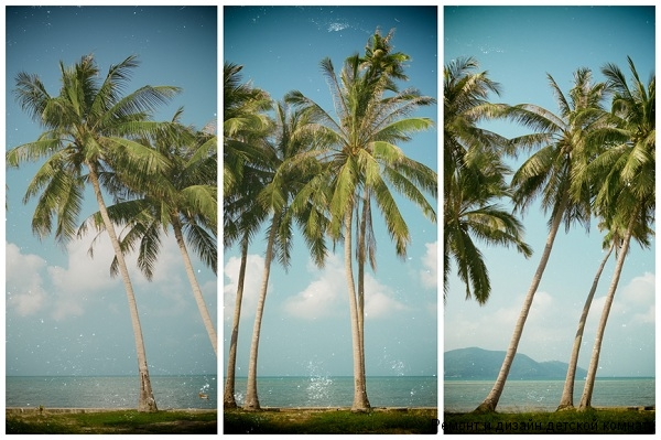 Триптих природа - пальмы, пляж